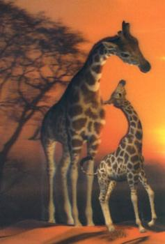 3D Postcard Stickers giraffes